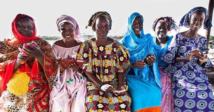 塞内加尔鱼类加工商